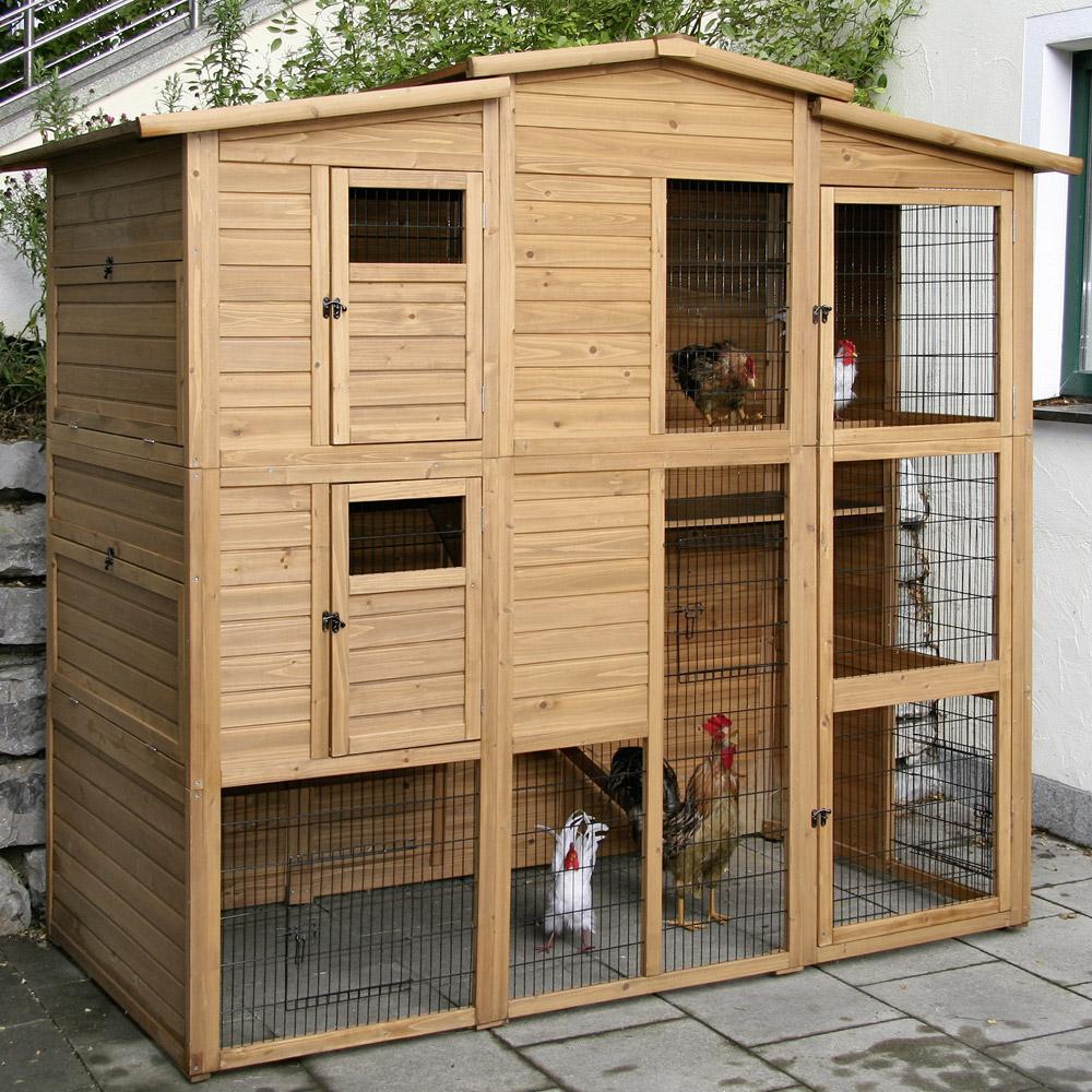 Basse cour vive l 39 levage poulailler 10 15 poules for Vive l elevage poulailler