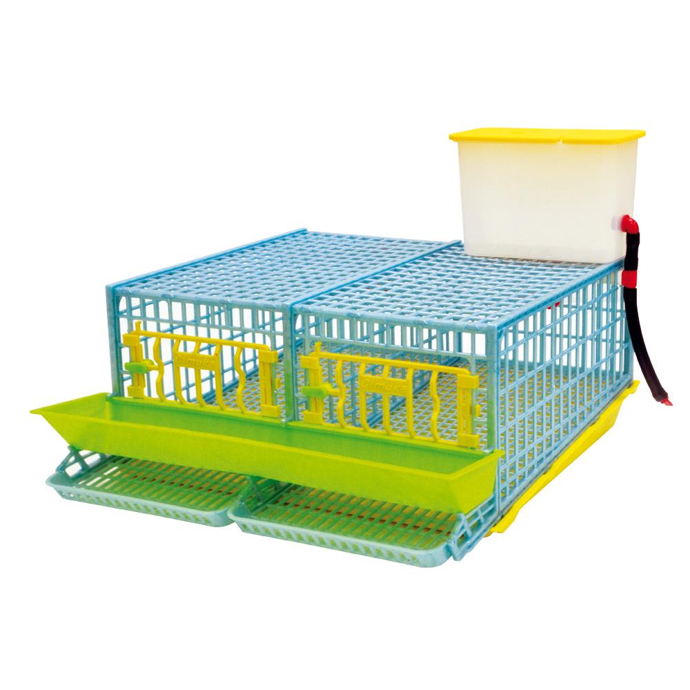 vive l 39 elevage cage pour caille pondeuses 2 compartiments basse cour. Black Bedroom Furniture Sets. Home Design Ideas