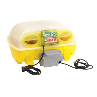 Couveuse Automatique 24 oeufs River Systems Biomaster