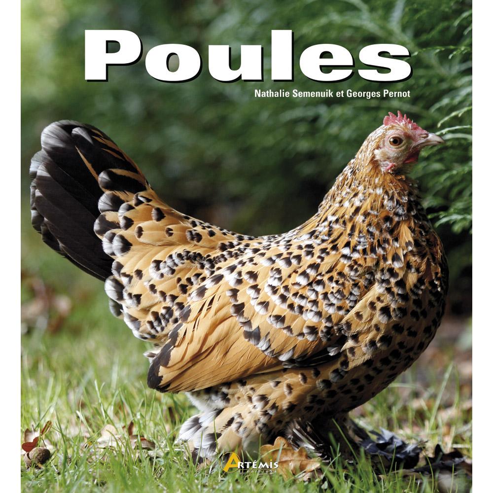 Recherche - Toutes les races de poules pondeuses ...